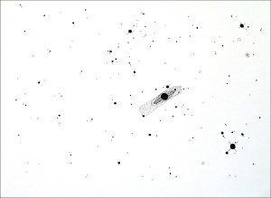 The Messier Catalogue (Proof of Concept): M102. 2007. Ink on paper. 30 x 22 in.